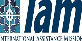 هیات معاونت بینالمللی (IAM)